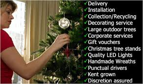 real christmas trees london we now deliver decorated christmas