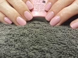 shellac blush teddy our manicures pinterest cnd shellac