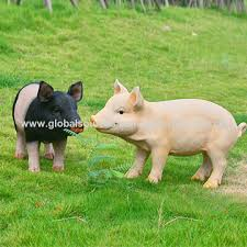 china polyresin pig garden ornaments various colors and