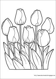 flower coloring coloring pages free kids