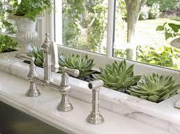 home plants decor uncategories easy to grow indoor plants easiest herbs to grow