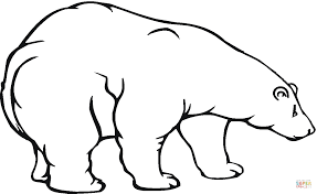 polar bear 18 coloring page free printable coloring pages