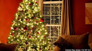 city agencies pnm partner to recycle trees lights