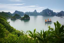 Triptrip by Halong Bay 1 Day Halong Day Trip Trip To Halong