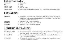 resume professional resume writers wondrous professional resume