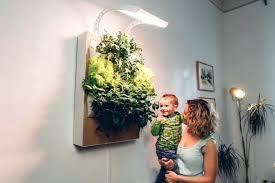 indoor wall garden u2013 exhort me