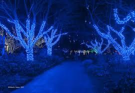 Lighting by Winter Walk Of Lights Nova Parks