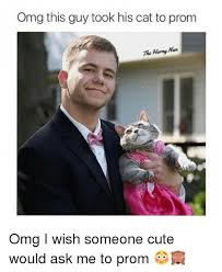 Prom Meme - omg this guy took his cat to prom the hanny man omg i wish someone