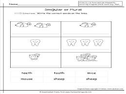 singular and plural nouns worksheets from the teacher u0027s guide