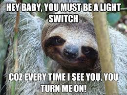75 best sloth memes images on sloth memes sloths and bbq