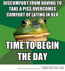 Funny Frog Meme - every day of my life the meta picture