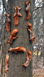haha wow lots of squirrels going around and around on tree