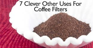 coffee filter uses 7 clever other uses for coffee filters
