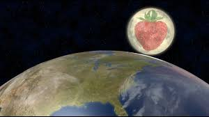 full strawberry moon strawberry full moon how and when to see it story wttg