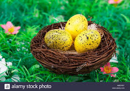 easter eggs decoration easter eggs decoration in nest on artificial grass background