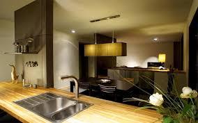 cuisine ouverte sur salle à manger amenagement salon cuisine ouverte 1 davaus cuisine moderne