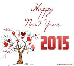 Happy Wedding Elsoar 224 Best Happy New Year 2015 Images On Pinterest Happy New Year