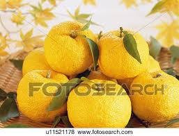 fruit in a basket pictures of yuzu fruit in a basket u11521178 search stock photos