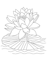 coloring pictures of flowers to print printable lotus coloring pages for kids