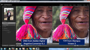 converter raw beyond belief differences between raw converters tom s photo world