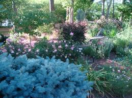 Interior Garden Services Landscaping Gardening Creative Projects And Plants Outdoor Rooms