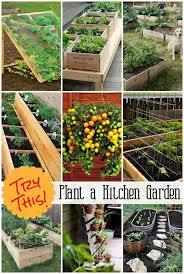 kitchen gardening ideas try this grow a vegetable garden four generations one roof