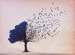 birds flying away tree tree and