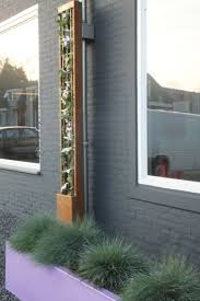 81 best urban solutions climbing plants images on pinterest