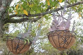 decorating your yard with hanging baskets