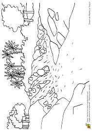 coloriage paysage cascade et palmiers