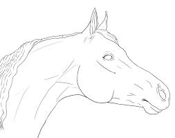horse head lineart google search art board pinterest horse