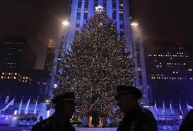 thousands gather for rockefeller tree in soggy midtown
