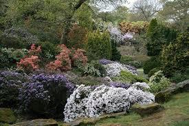 clarence elliott garden writer and alpine specialist parks and