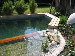 Backyard Swimming Ponds by Naturally Filtrated Swimming Pool Giving Back To The Land