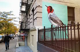 the audubon mural project profile of street artist atm audubon red faced