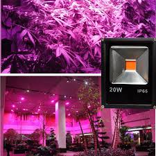 Outdoor Grow Lights Compare Prices On Outdoor Light Plant Online Shopping Buy Low