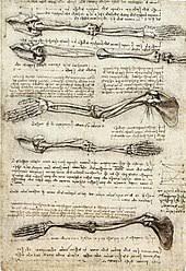 science and inventions of leonardo da vinci wikipedia