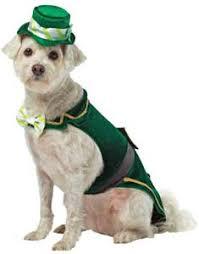 st patrick u0027s day costumes costume craze