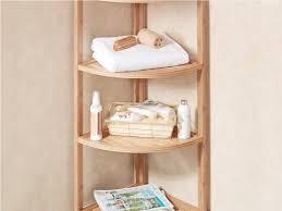 Corner Shelf For Bathroom Why Every Corner Bathroom Shelf Needs A Corner Toilet U2014 The Homy