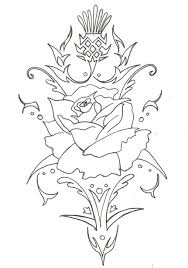 thistle drawing at getdrawings com free for personal use thistle