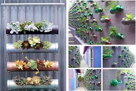 Indoor Hanging Garden Ideas Vertical Garden Ideas