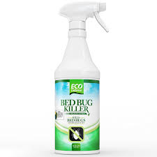 How Can I Kill Bed Bugs Amazon Com Eco Defense Bed Bug Killer Natural Organic Formula