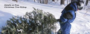 free christmas tree pickup for west chicago residents