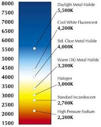 what is the hottest color a guide to understanding modern light bulbs color and temperature