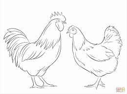farm animal printable farm hen coloring page animal coloring pages