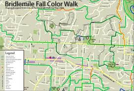 fall color walk southwest neighborhoods