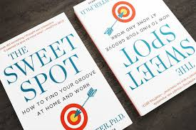How To Find Negative Energy At Home The Sweet Spot Book How To Accomplish More By Doing Less
