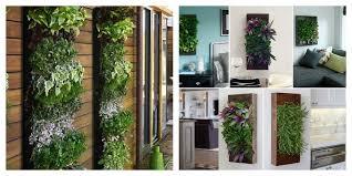 herb garden near fridge indoor vertical wall gardens pinterest