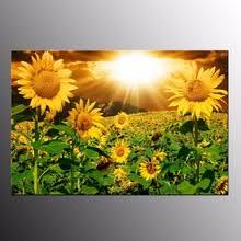 Prints For Home Decor Popular Sunflower Art Prints Buy Cheap Sunflower Art Prints Lots