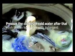 How To Get Mildew Out Of Curtains How To Remove Mold From Clothes Youtube